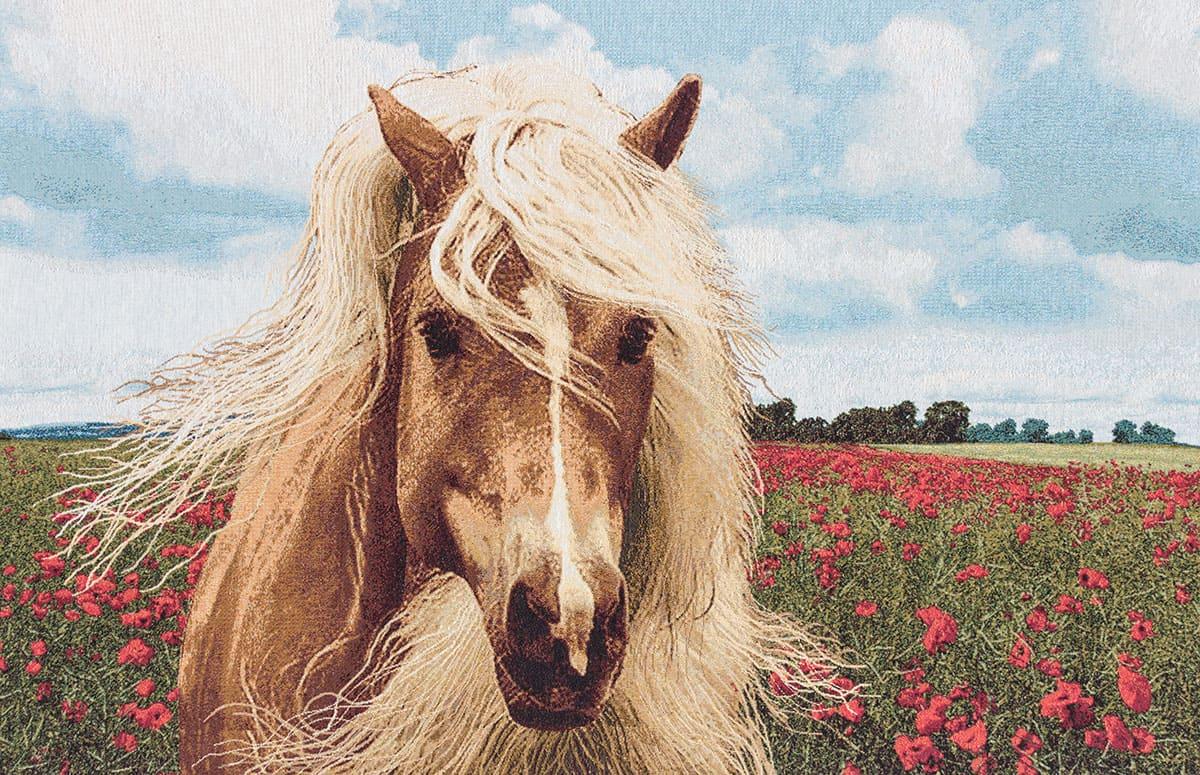 Vendita arazzo cavallo arazzi moderni for Arazzi moderni
