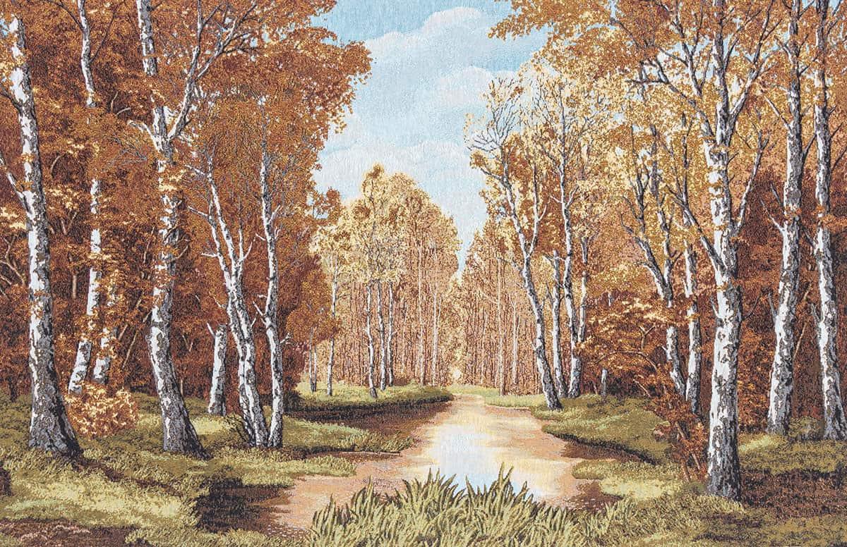 Paesaggio bosco autunnale