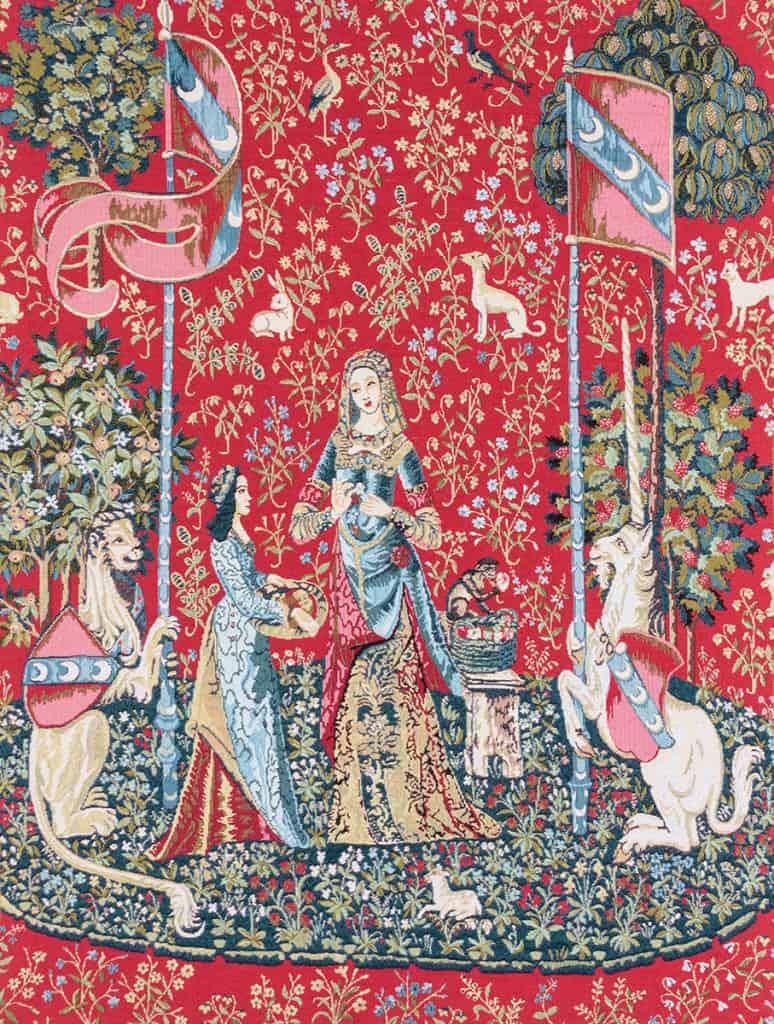 Dama e unicorno - Clouny
